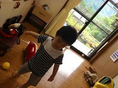 【とらちゃん】実家についたけどまだ不機嫌 (2012/7/14)