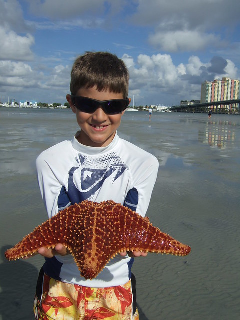 Connor with a cushion starfish.