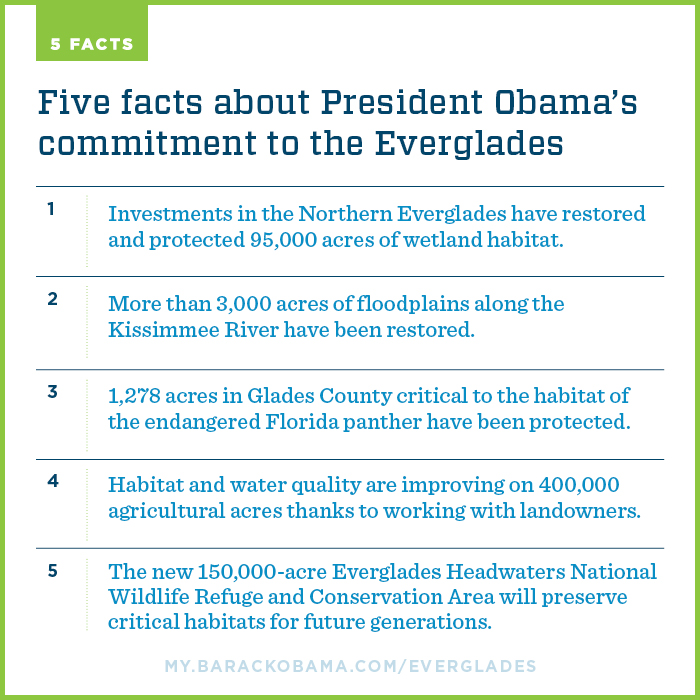 Everglades inforgraphic