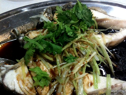 Soy Sauce King Steamed Fish