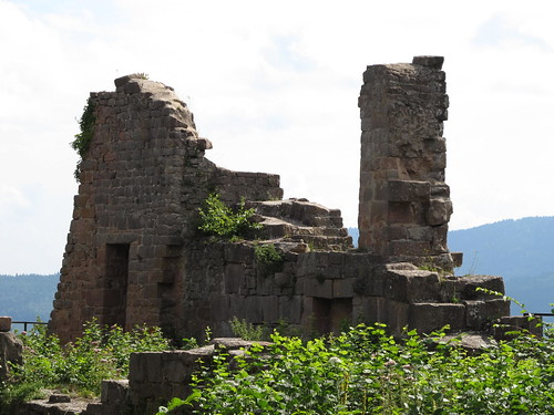 ruine du chateaux frankenbourg 117