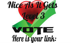 nice as it gets level 3 vote