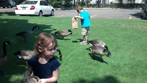 Zoo Park 8/9/12