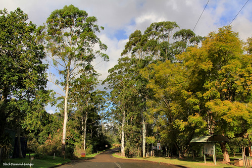 Eastern Exit From Hannam Vale Village, Manning Valley, NSW