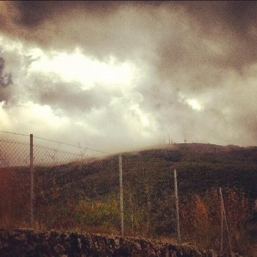Despertar en almendras de la Cañada
