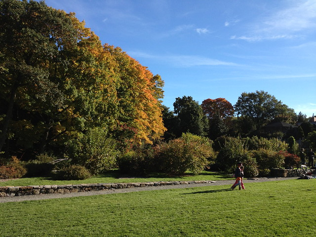 day at arnold arboretum