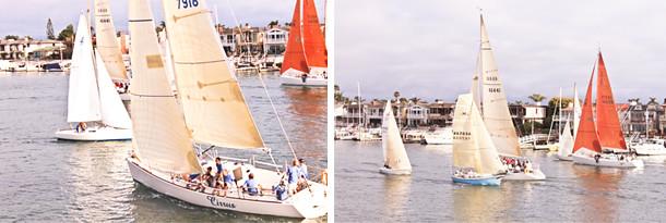sailboats 8