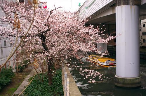 Higashi-Yokobori river & boat