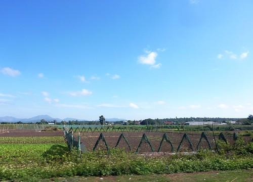 V-Route Pleiku-Quy Nhon (3)