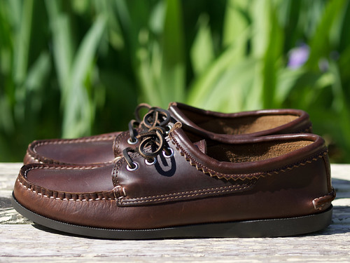 Quoddy Trail Moccasin / Blucher