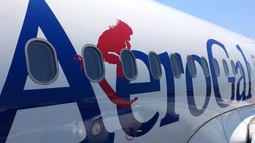 AeroGal、再び