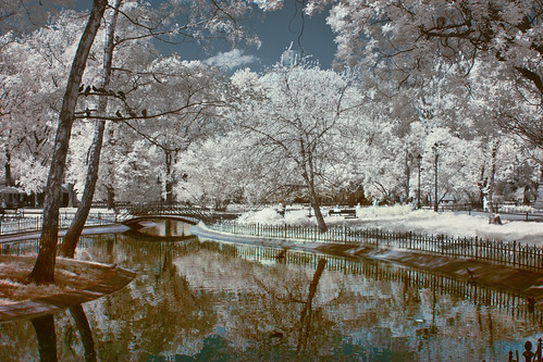 Spring in the infrared