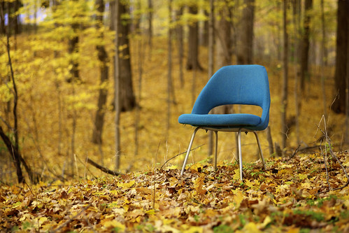 Take a Seat When the Leaves Fall Down