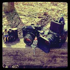 カメラロール-2593