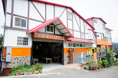 Hugo Assam tea farm