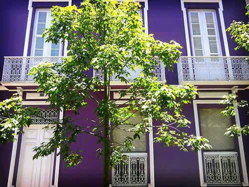 Pon el violeta en tu casa