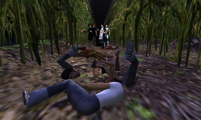 The Corn Field - 12