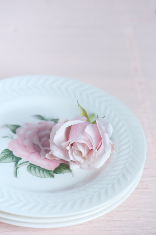 plated rose
