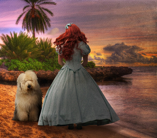 ocean california travel sunset vacation dog holiday max cute ariel beach beautiful fairytale photoshop sunrise canon disneyland disney redhead tropical amusementpark orangecounty anaheim hdr themepark magickingdom theoc littlemermaid waltdisney digitalimaging disneyprincess meetgreet disneylandpark photomatix meetandgreet disneyresort englishsheepdog disneygirl disneylandprincess disneyside