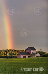 Rainbow disappearing into the forest behind a pink farm house