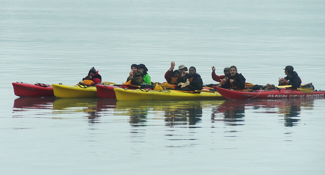 Kayakers near glacier - whale watching tours seward