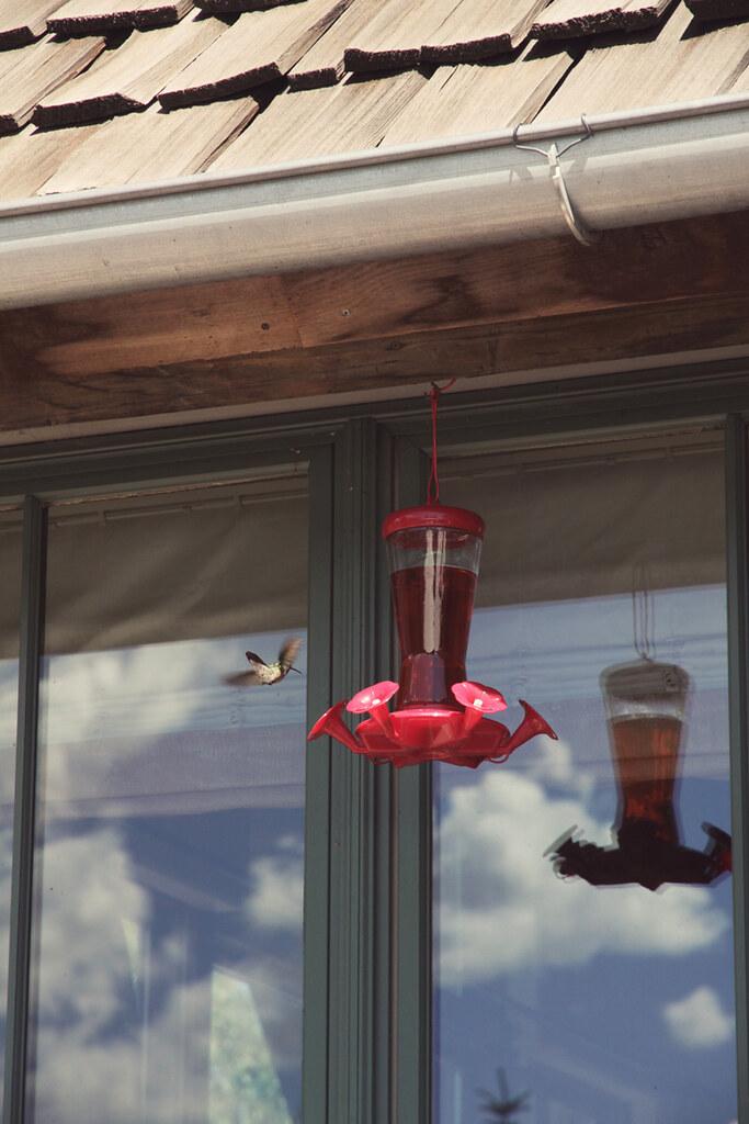 project 12 - July - 2 - hummingbird feeder