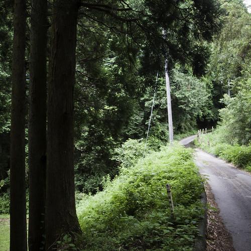 Country Road, Yorokeikoku, Chiba, Japan