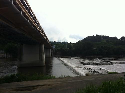 利根川自転車道から望む橋