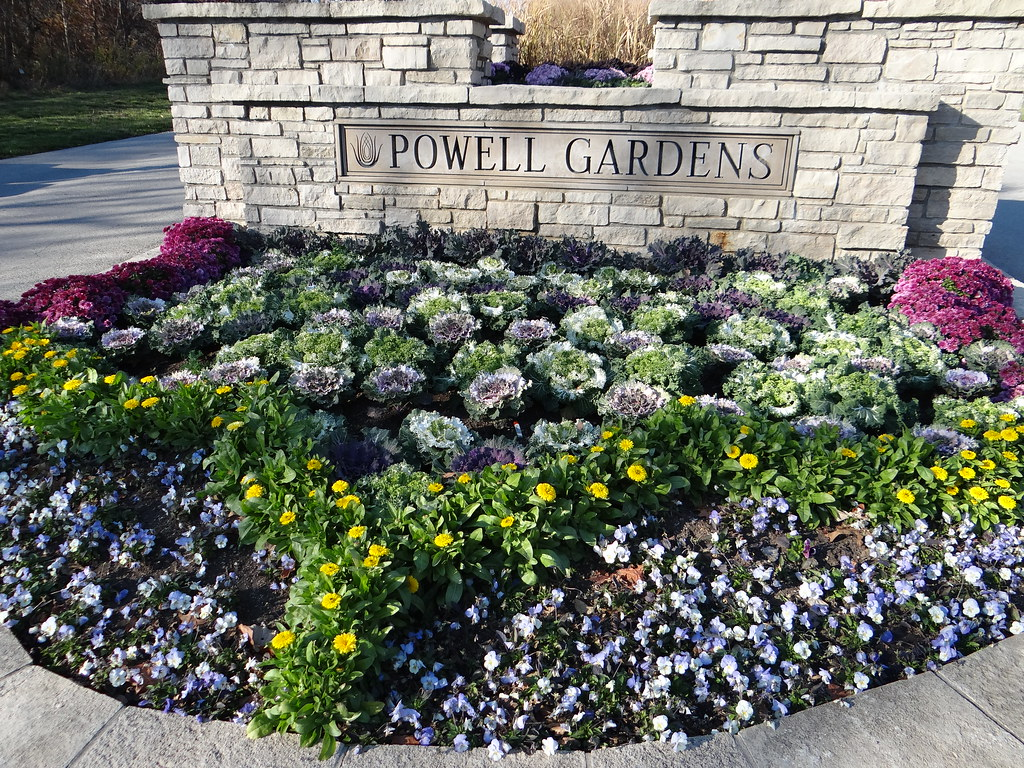 Flowers that defy jack frost powell gardens kansas citys yes there are still many beautiful flowers at powell gardens the fall floral displays are designed with flowers and foliage that defy jack frost izmirmasajfo