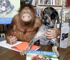 con orango
