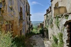 Poggioreale, Sicily, April 2016 430