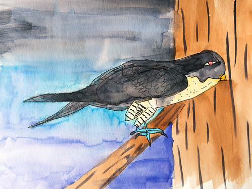 Claudia Martinez, 12, titled her watercolor painting