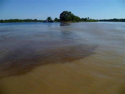 亞馬遜河黑水與白水的交界。白水來自安地斯山脈,夾帶大量泥沙礦物而得此名。