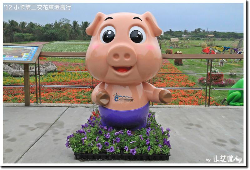 台東花海台東成功花海IMG_0970