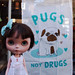 pugs not drugs by Cosmia ♪