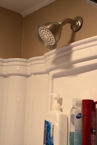 Install Low-Flow Showerheads (157/365)