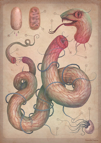 Serpent analysis by VLADIMIR... . . .