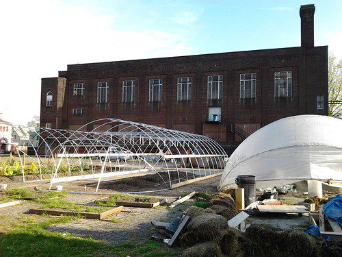 Greenhouses in process