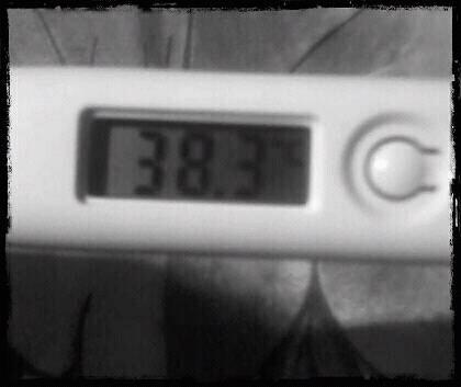 mar22 Feverish