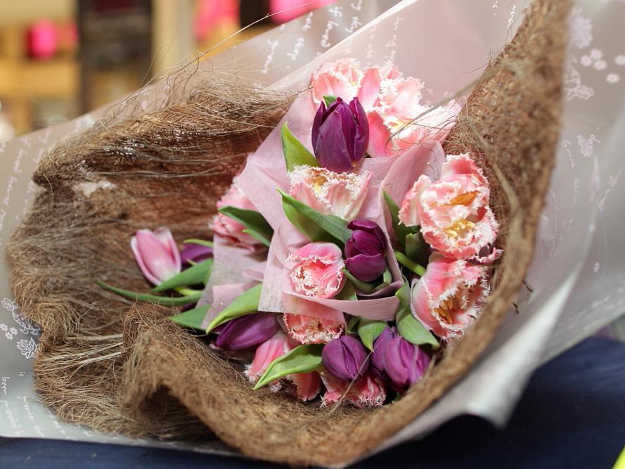 Tulips 2011_092 (2).JPG