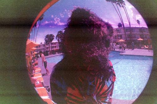 Coachella Fisheye Saguaro