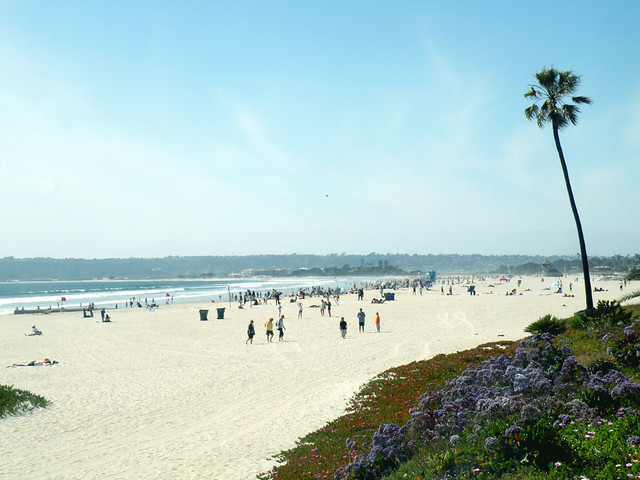 The Beach at Coronado