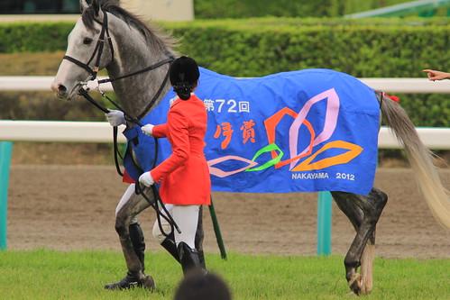 皐月賞勝ち馬 ゴールドシップ