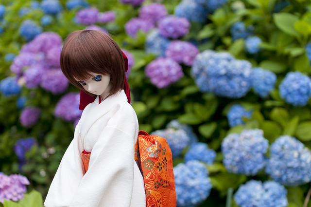 花野辺の里