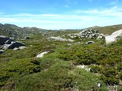 Sur la crête de Serra Longa avec la crête Castellu d'Ornucciu - Monte Canoso à gauche
