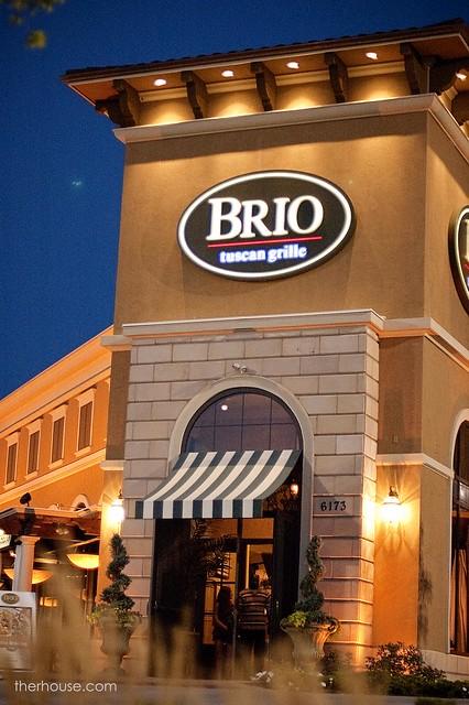 BRIO Review 14