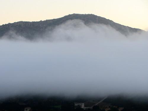 fog layer