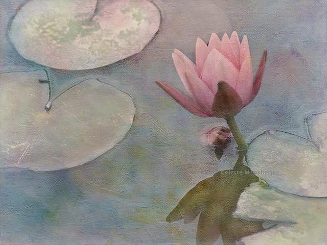 Ode to Claude Monet