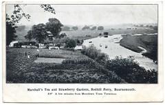 Marshall's Tea and Strawberry Gardens, Redhill Ferry, Bournemouth, Dorset