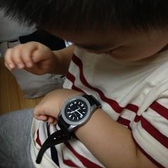 とらちゃんとお父さんの腕時計 (2012/8/18)
